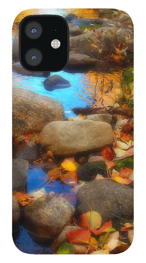 Autumn IPhone 12 Case featuring the photograph Autumn By The Creek by Tara Turner