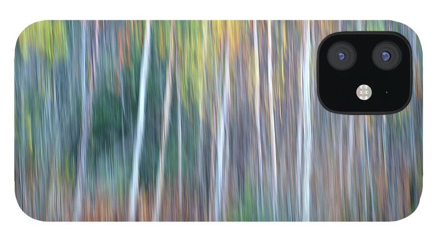 Forest Pastels Form An Autumn Impression IPhone 12 Case featuring the photograph Autumn Impression by Bill Morgenstern
