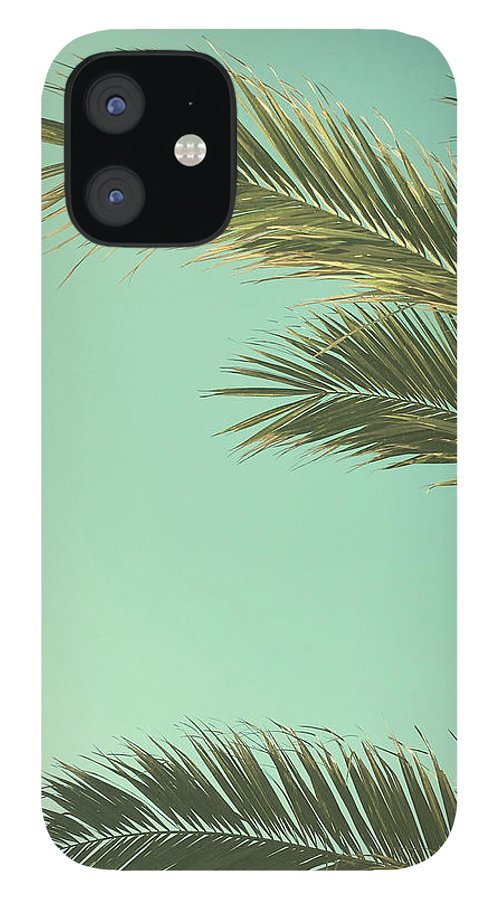 Palm Trees IPhone 12 Case featuring the photograph Autumn Palms II by Cassia Beck