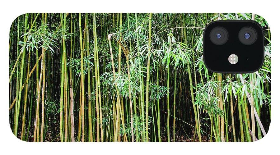 Bamboo Chimes IPhone 12 Case featuring the photograph Bamboo Chimes, Waimoku Falls trail, Hana Maui Hawaii by Michael Bessler
