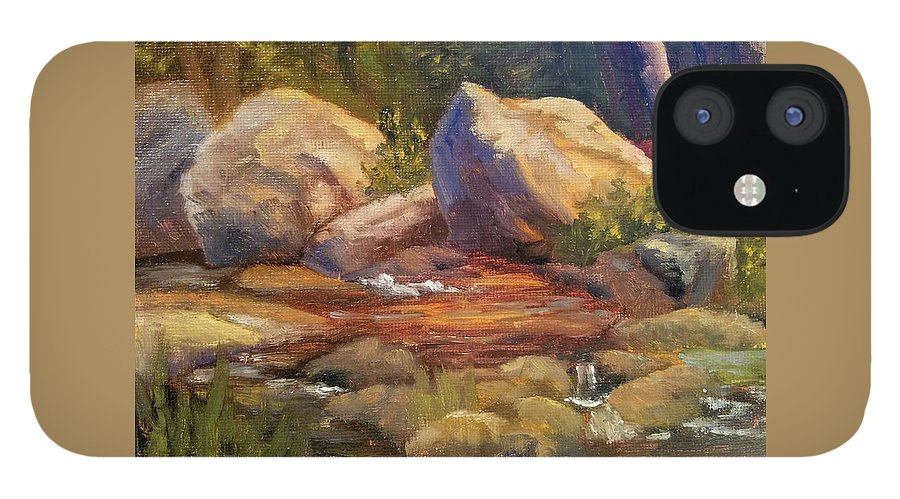 Rocks IPhone 12 Case featuring the painting Barely a Trickle by Sharon E Allen