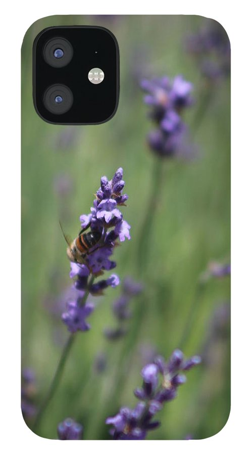 Deep Purple Lavender IPhone 12 Case featuring the photograph Bee on Deep Purple Lavender Spike by Colleen Cornelius