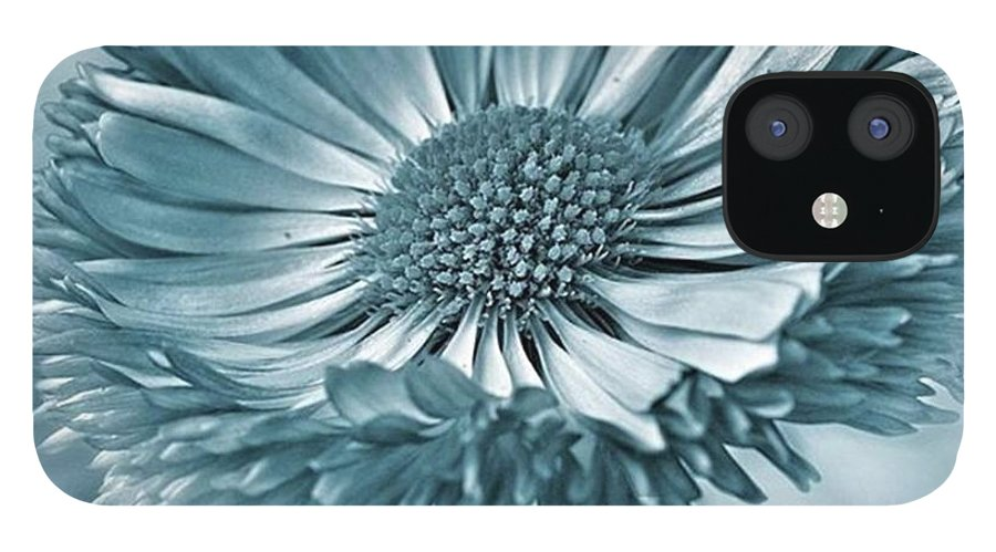 Beautiful IPhone 12 Case featuring the photograph Bellis In Cyan  #flower #flowers by John Edwards