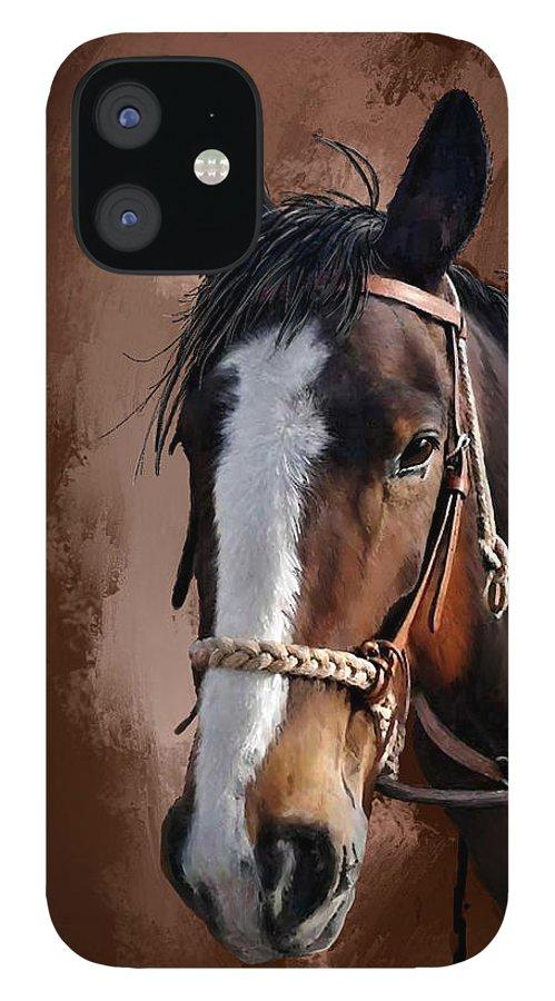 Corel Painter 18 IPhone 12 Case featuring the digital art Blaze by Susan Kinney