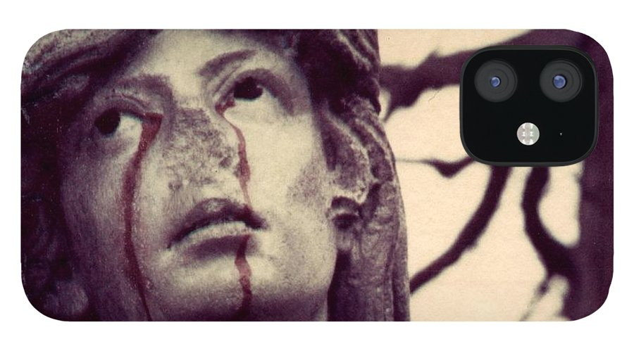 Polaroid IPhone 12 Case featuring the photograph Blood Is The New Black by Jane Linders