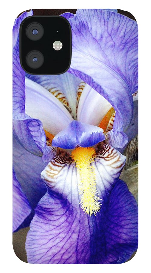 Iris IPhone 12 Case featuring the photograph Blue Bearded Iris by Mark Wiley