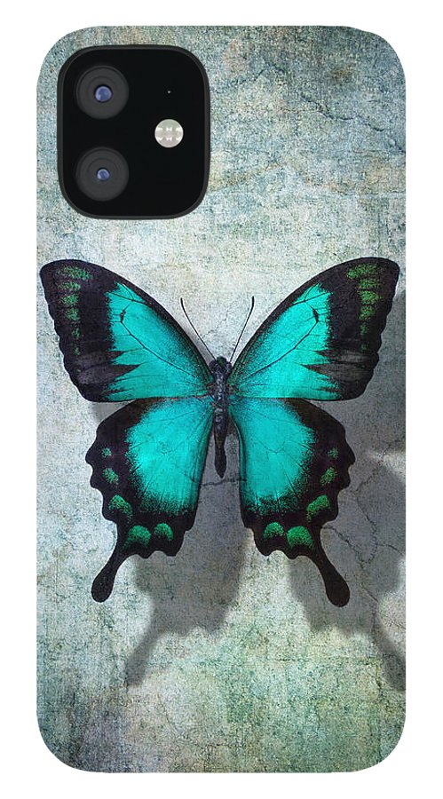 Still Life IPhone 12 Case featuring the photograph Blue Butterfly Resting by Garry Gay