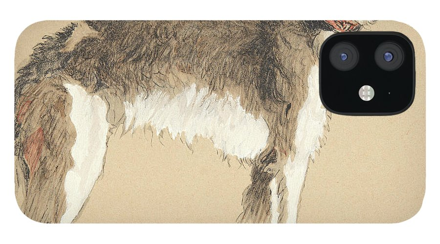 Aldin IPhone 12 Case featuring the drawing Borzoi, 1930 by Cecil Charles Windsor Aldin