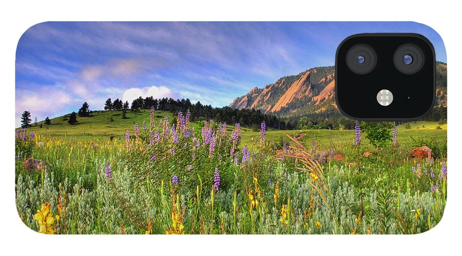 Colorado IPhone 12 Case featuring the photograph Colorado Wildflowers by Scott Mahon