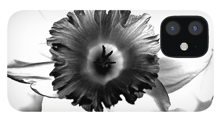 Bw black & White Modern Edge Daffodil Nature Bloom Flower Photograph IPhone 12 Case featuring the photograph ColorBlind. by Stevie Ellis