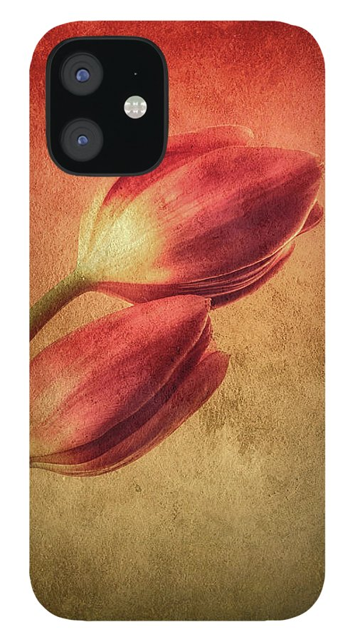 Tulips IPhone 12 Case featuring the photograph Colorful Tulips Textured by Wim Lanclus
