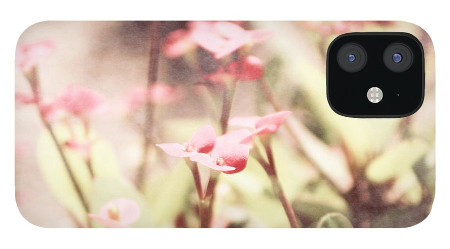 Prism Pink IPhone 12 Case featuring the photograph Country Memories in Prism Pink by Colleen Cornelius