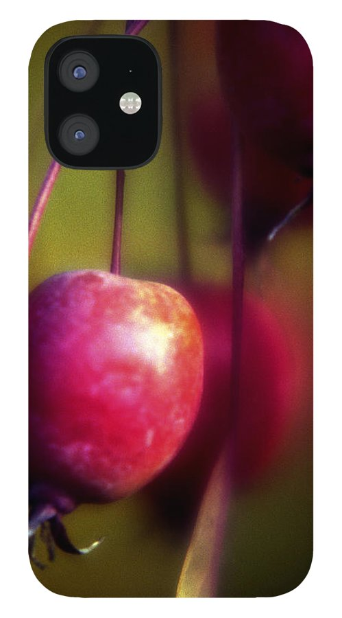 Macro IPhone 12 Case featuring the photograph Crabapple by Lee Santa