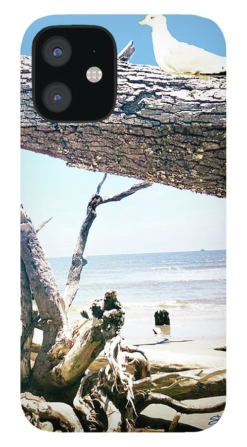 Daydreams And Driftwood iPhone 12 Case featuring the photograph Daydreams and Driftwood by Seth Weaver