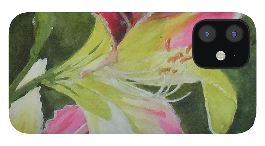 Daylily IPhone 12 Case featuring the painting Daylily Study 1 by Jean Blackmer