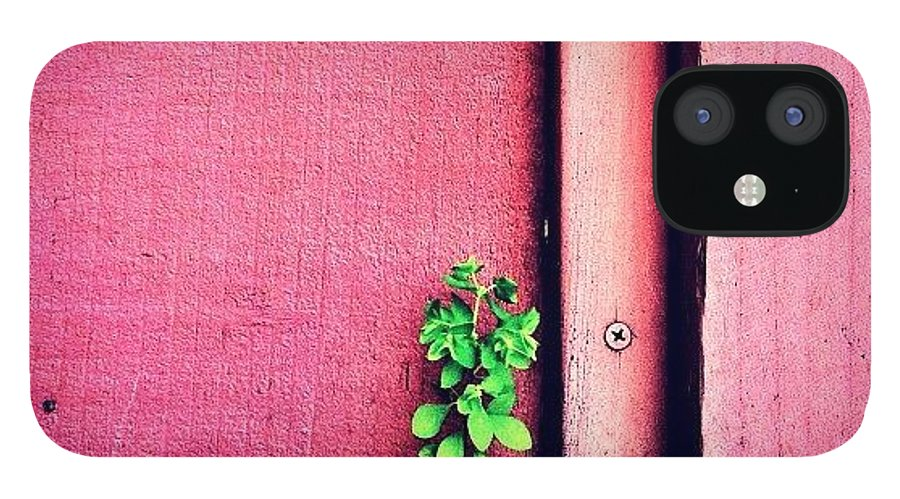Pink IPhone 12 Case featuring the photograph Determination by Julie Gebhardt