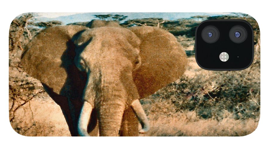 Elephant IPhone 12 Case featuring the photograph Elephant Eyes by Lin Grosvenor