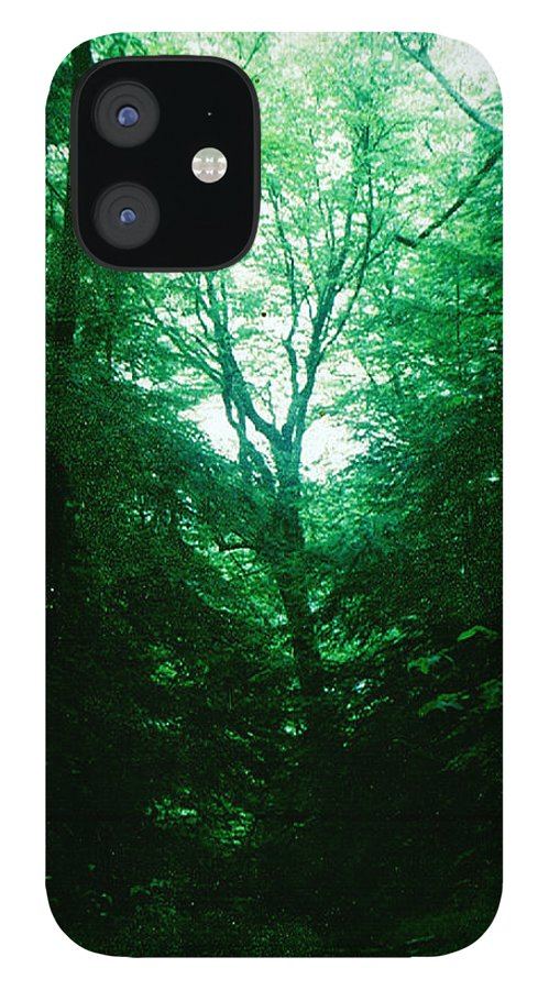 Emerald iPhone 12 Case featuring the photograph Emerald Glade by Seth Weaver