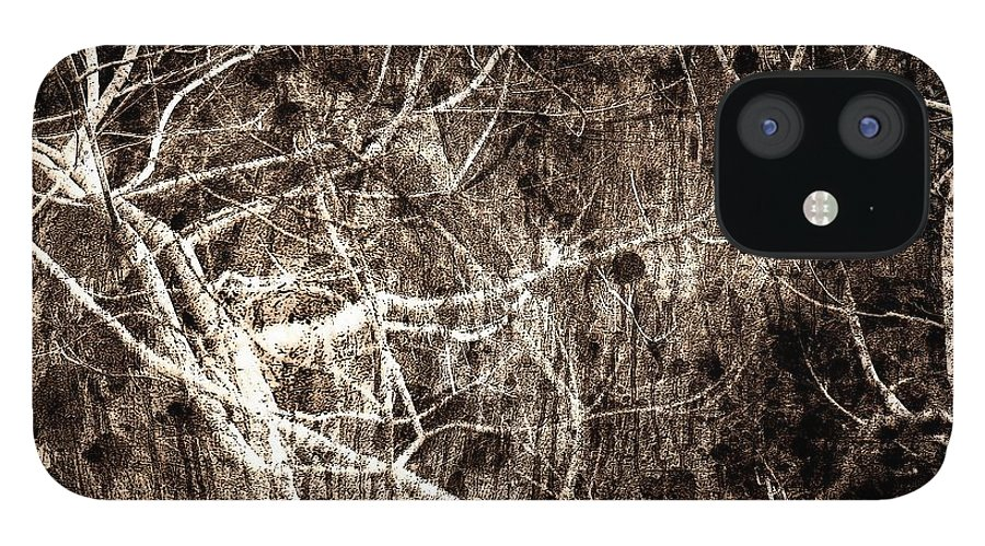 Tree IPhone 12 Case featuring the photograph Endless by Gaby Swanson