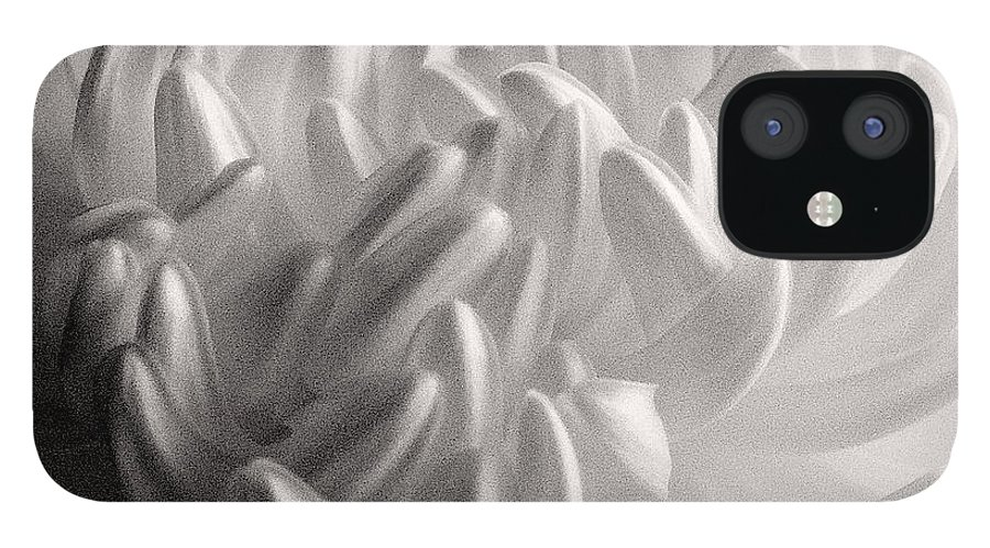 Nature IPhone 12 Case featuring the photograph Ethereal Chrysanthemum by Zayne Diamond Photographic