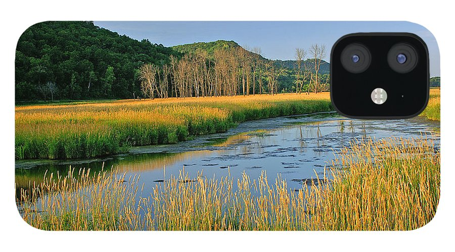 Wetlands IPhone 12 Case featuring the photograph Evening Gold by Bill Morgenstern