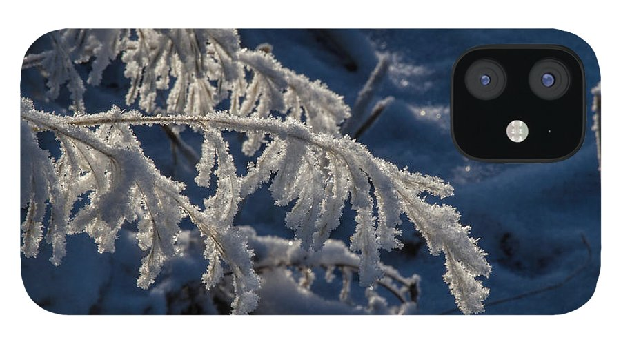 Frost IPhone 12 Case featuring the photograph First Light by Alana Thrower