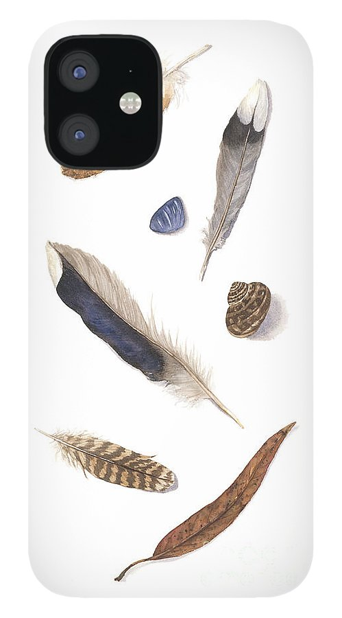 Feathers IPhone 12 Case featuring the painting Found Treasures by Lucy Arnold