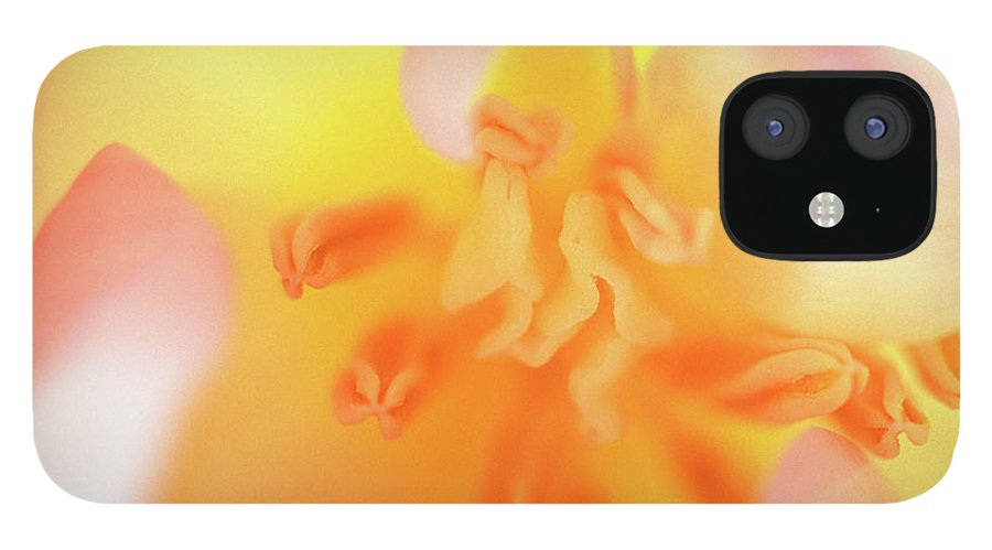 Internal Beauty Of A Tulip IPhone 12 Case featuring the photograph From The Heart by Bill Morgenstern