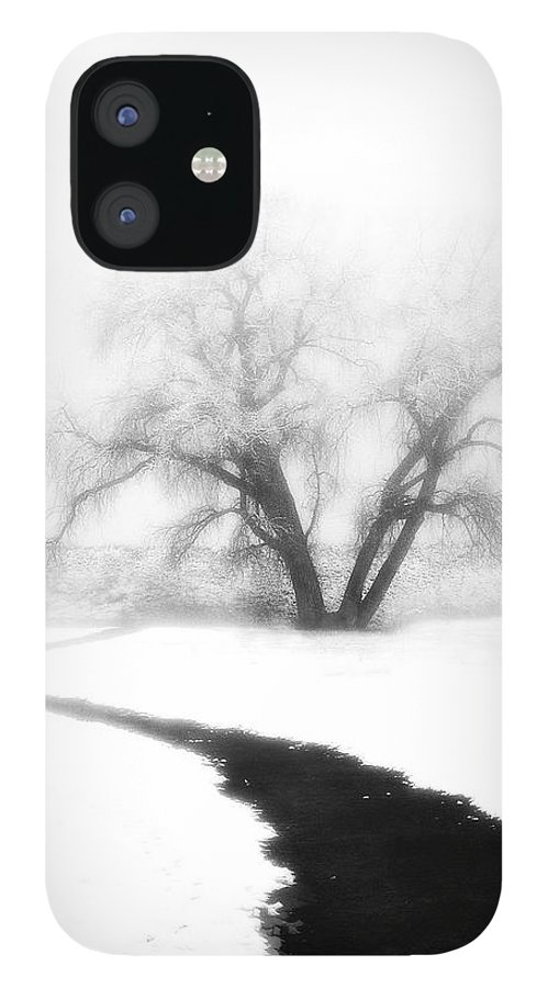 Tree IPhone 12 Case featuring the photograph Getting There by Marilyn Hunt