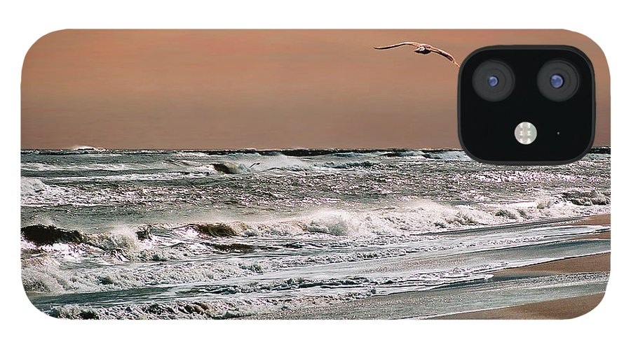 Seascape IPhone 12 Case featuring the photograph Golden Shore by Steve Karol