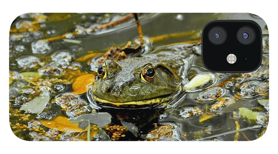 Frogs IPhone 12 Case featuring the photograph Good Morning by Donna Shahan