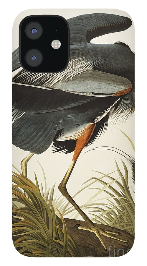 Great Blue Heron IPhone 12 Case featuring the drawing Great Blue Heron by John James Audubon