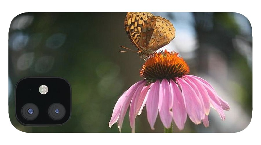 Butterfly IPhone 12 Case featuring the photograph Great Spangled Fritillary by Debra Sandstrom