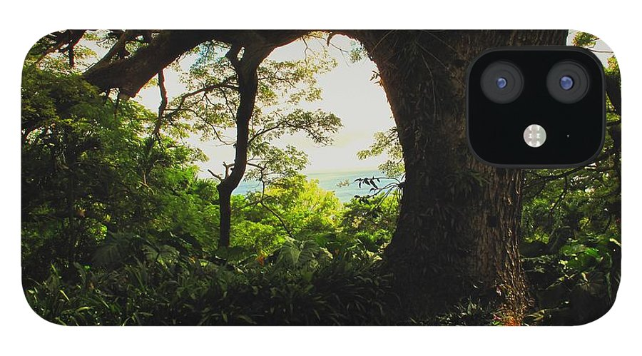 Tropical iPhone 12 Case featuring the photograph Green Giant by Ian MacDonald