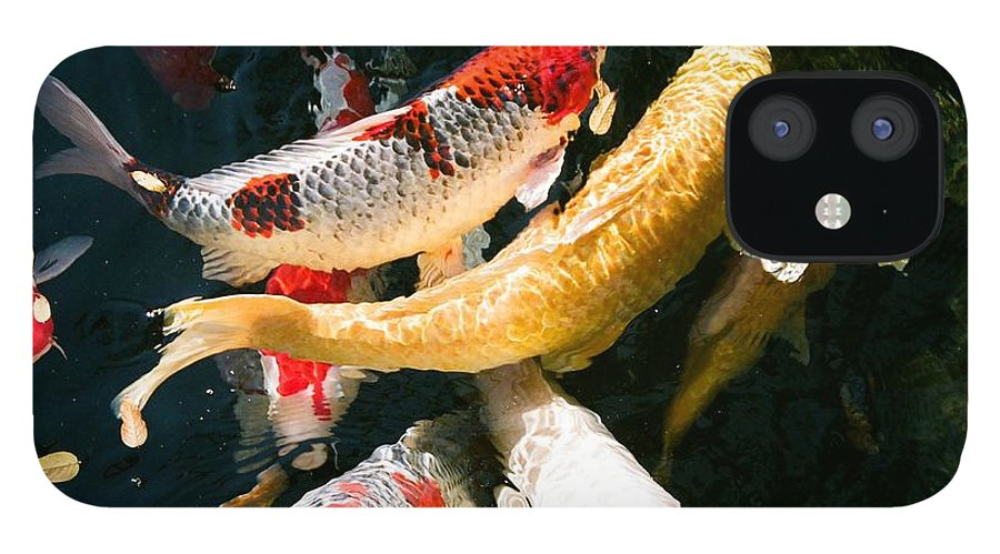 Fish IPhone 12 Case featuring the photograph Group of Koi Fish by Dean Triolo