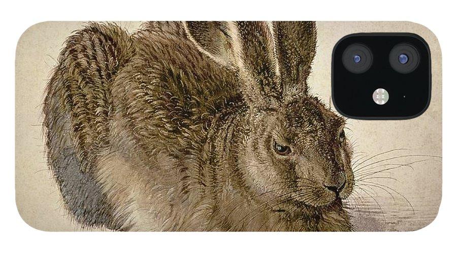 Albrecht Duerer Iphone 12 Cases Fine Art America