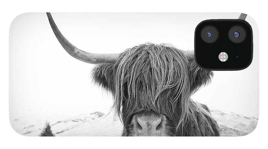 Highland Cow iPhone 12 Case featuring the photograph Highland Cow mono by Grant Glendinning