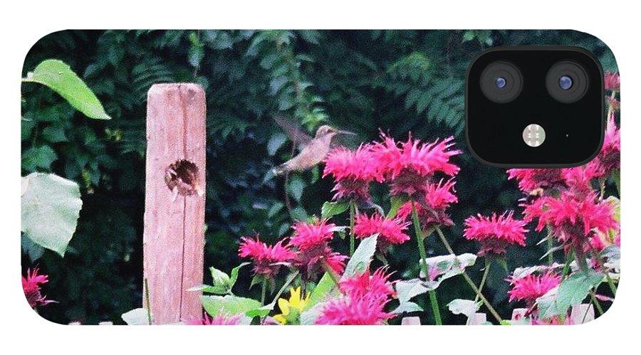 Hummingbird IPhone 12 Case featuring the photograph Hummingbird In Bee Balm by Debra Sandstrom