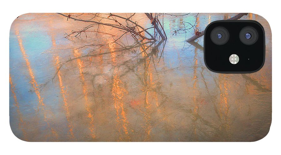 Ice IPhone 12 Case featuring the photograph Ice Reflections 2 by Tara Turner