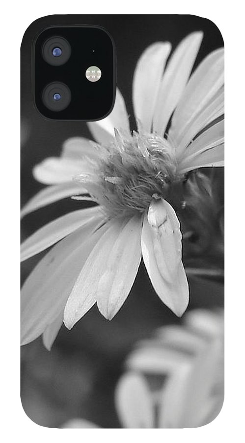 IPhone 12 Case featuring the photograph Just Black And White by Luciana Seymour