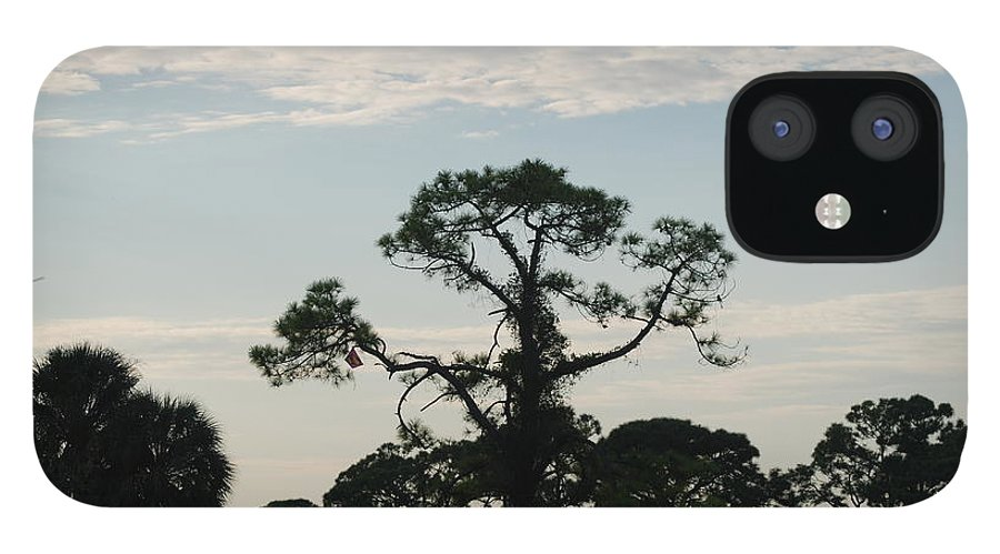 Kite IPhone 12 Case featuring the photograph Kite In The Tree by Rob Hans