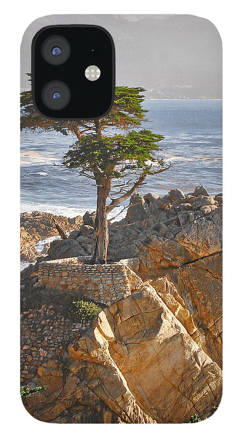 Pine IPhone 12 Case featuring the photograph Lone Cypress - The icon of Pebble Beach California by Christine Till