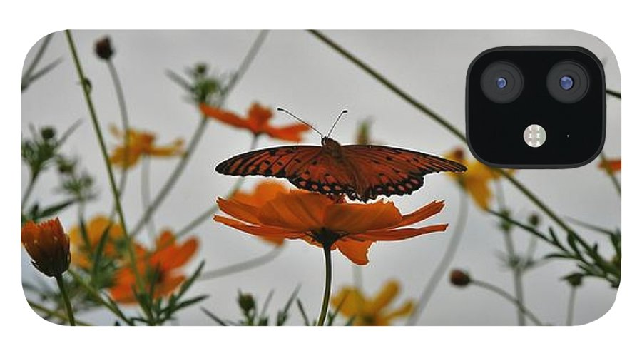 Monarch Butterflies IPhone 12 Case featuring the photograph Monarch on the River by Leon Hollins III