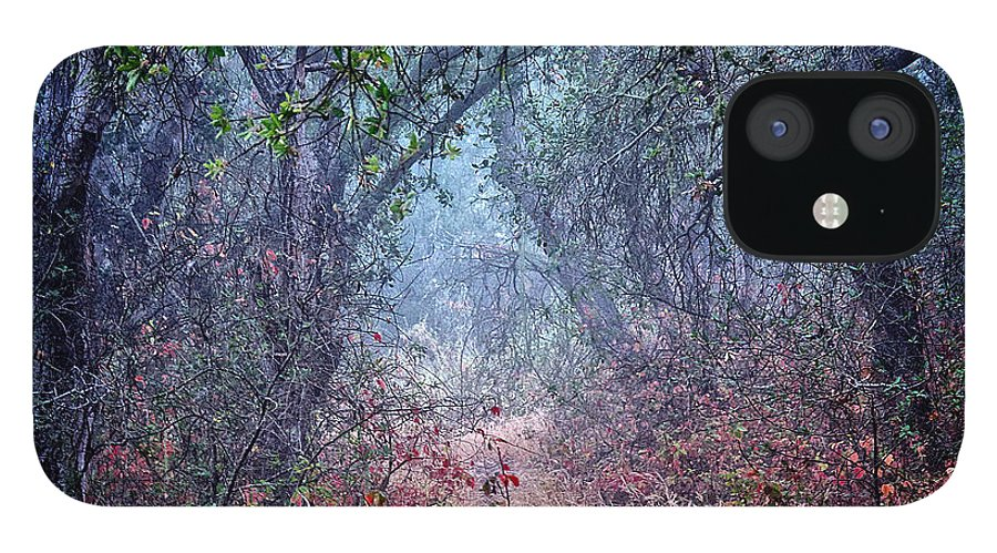 Nature iPhone 12 Case featuring the photograph Nature's Chaos, Arroyo Grande, California by Zayne Diamond Photographic