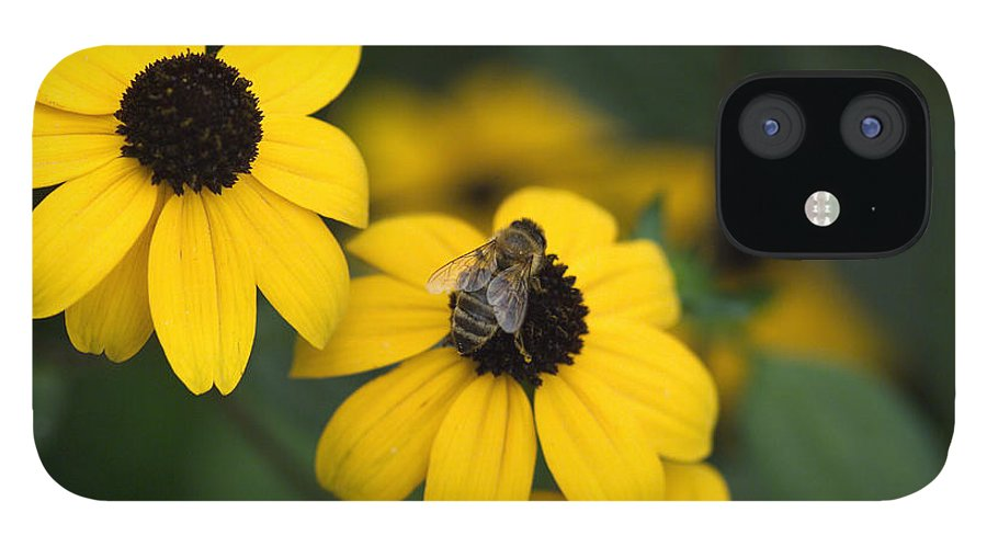 Yellow IPhone 12 Case featuring the photograph One bee over the flower's nest by Adrian Bud