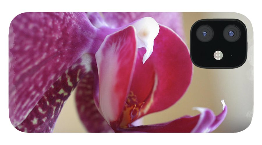 Orchid IPhone 12 Case featuring the photograph Orchid 4 by David Bearden