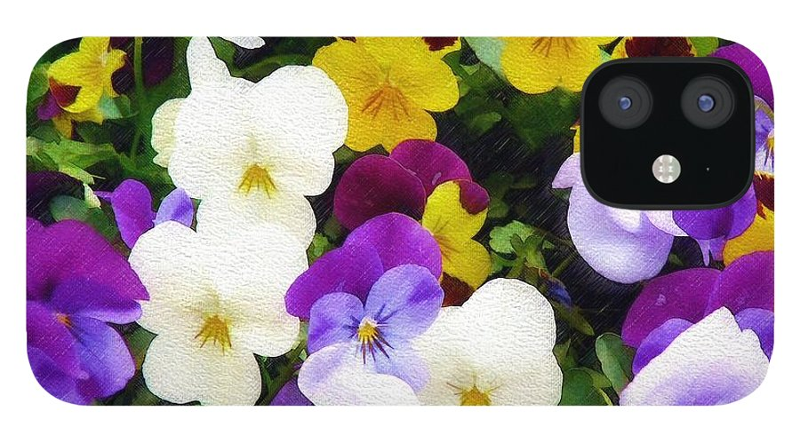 Pansies IPhone 12 Case featuring the photograph Pansies by Sandy MacGowan