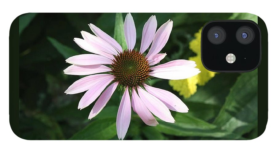 Pink Cone Flower IPhone 12 Case featuring the photograph Pink Cone Flower 2 by Debra Sandstrom