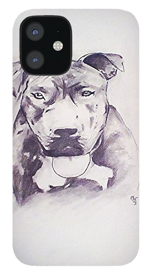 Pencil IPhone 12 Case featuring the drawing Pit Bull 2 by Crystal Webb