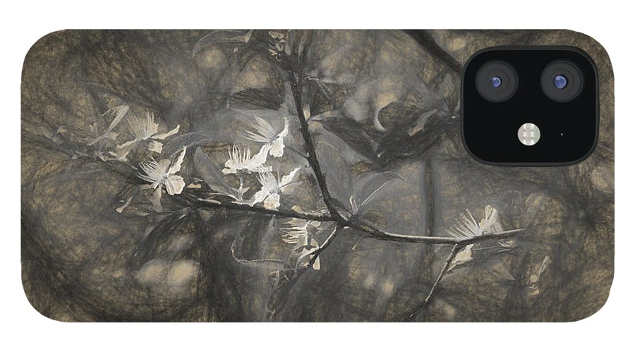 Apple IPhone 12 Case featuring the photograph Plum blossom impression by Adrian Bud